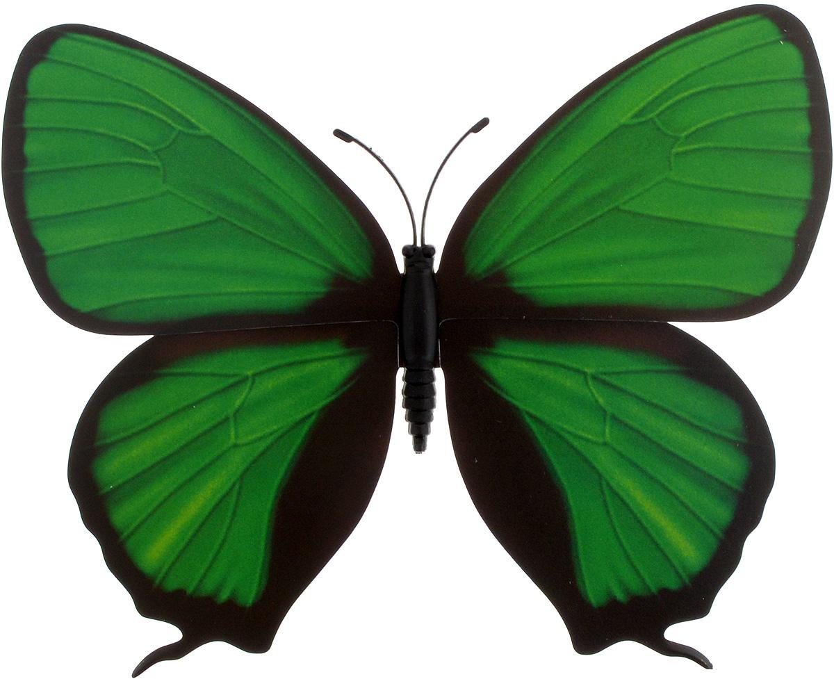 Декоративное украшение Village People Тропическая бабочка, с магнитом, цвет: зеленый (24), 12 х 8 смБрелок для ключейДекоративная фигурка Village People Тропическая бабочка изготовлена из ПВХ. Изделие выполнено в виде бабочки и оснащено магнитом, с помощью которого вы сможете поместить изделие в любом удобном для вас месте. Это не только красивое украшение, но и замечательный способ отпугнуть птиц с грядок. Яркий дизайн фигурки оживит ландшафт сада.