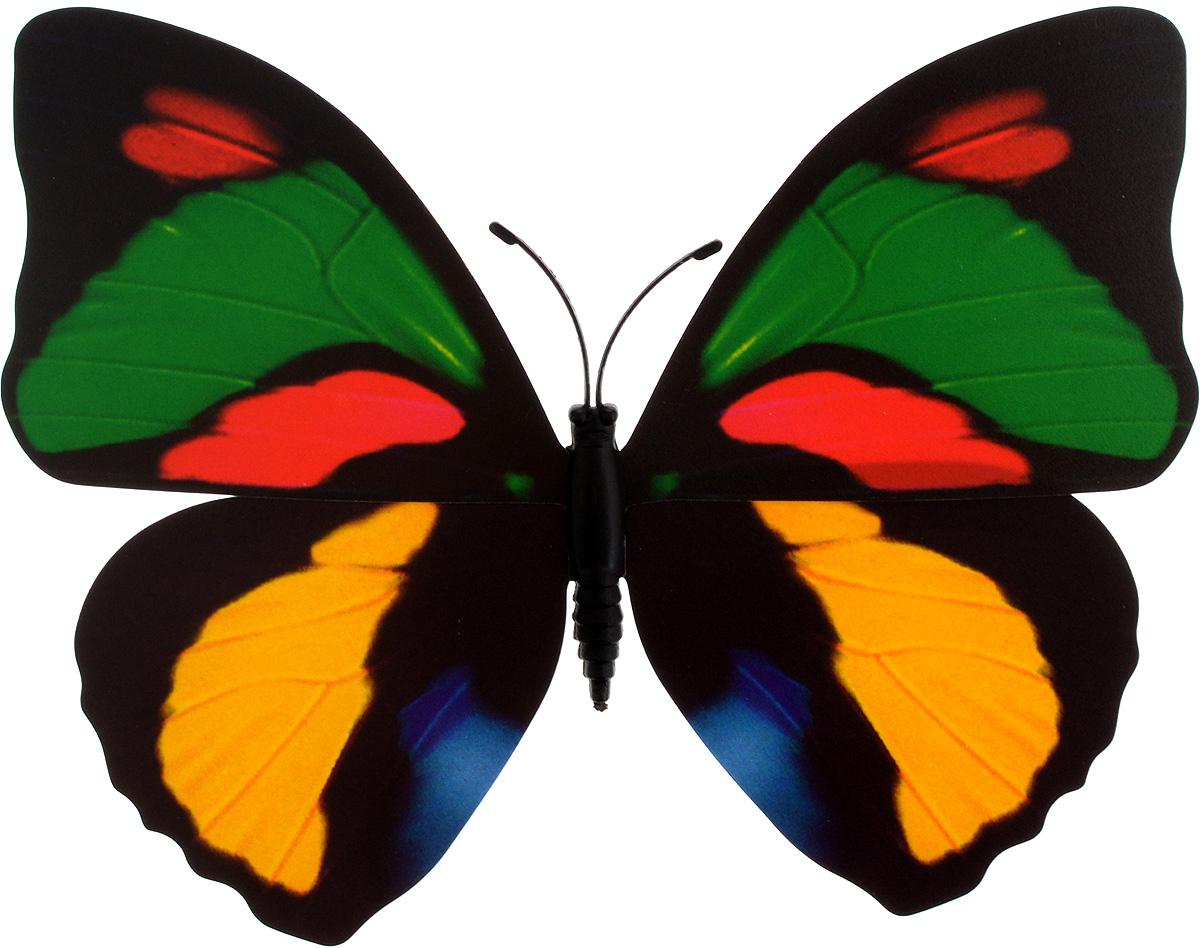 Декоративное украшение Village People Тропическая бабочка, с магнитом, цвет: зеленый, красный, желтый (25), 12 х 8 смБрелок для ключейДекоративная фигурка Village People Тропическая бабочка изготовлена из ПВХ. Изделие выполнено в виде бабочки и оснащено магнитом, с помощью которого вы сможете поместить изделие в любом удобном для вас месте. Это не только красивое украшение, но и замечательный способ отпугнуть птиц с грядок. Яркий дизайн фигурки оживит ландшафт сада.