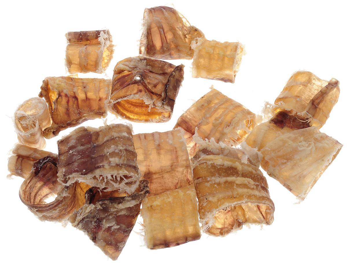 Лакомство для собак Titbit XL, колечки из трахеи. 72970120710Лакомство для собак Titbit XL изготовлено из высушенной говяжьей трахеи, нарезанной поперек. Низкокалорийное, богатое хрящевой и соединительной тканью лакомство. Рекомендации к применению: для удаления зубного налета, профилактики зубного камня, массирует десны. Улучшает пищеварение и перистальтику кишечника. Сохраняет целостность мебели и обуви. Великолепно скрасит досуг собак преклонного возраста, а также собак с неполной зубной формулой.Состав: высушенная говяжья трахея.Средняя ширина лакомства: 3 см.
