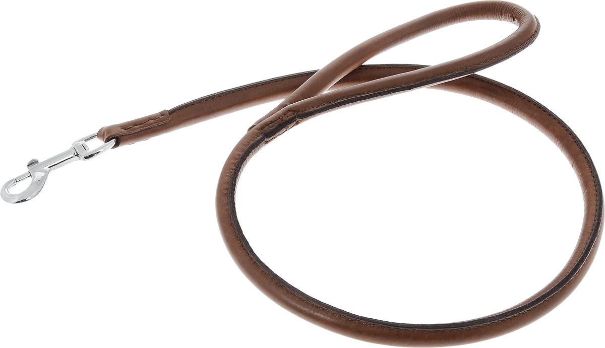 Поводок для собак Каскад Элита, ширина 1 см, длина 100 см0120710Поводок для собак Каскад Элита изготовлен из натуральной кожи и снабжен металлическим карабином. Поводок отличается не только исключительной надежностью и удобством, но и оригинальным дизайном. Он идеально подойдет для активных собак, для прогулок на природе и охоты. Поводок - необходимый аксессуар для собаки. Ведь в опасных ситуациях именно он способен спасти жизнь вашему любимому питомцу. Длина поводка: 1 см.Ширина поводка: 100 см.