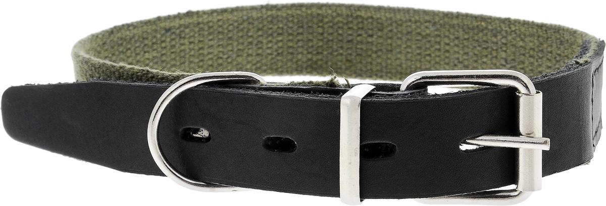 """Ошейник брезентовый Каскад """"Классика"""", для собак, цвет: зеленый, черный, ширина 2,5 см, обхват шеи 39-46 см"""
