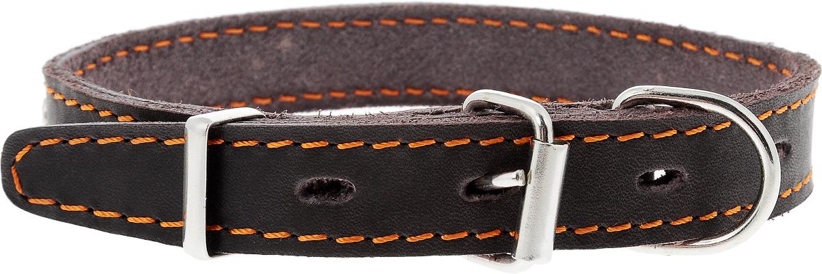 """Ошейник для собак Каскад """"Классика"""", двойной, цвет: темно-коричневый, ширина 2 см, обхват шеи 27-35 см"""