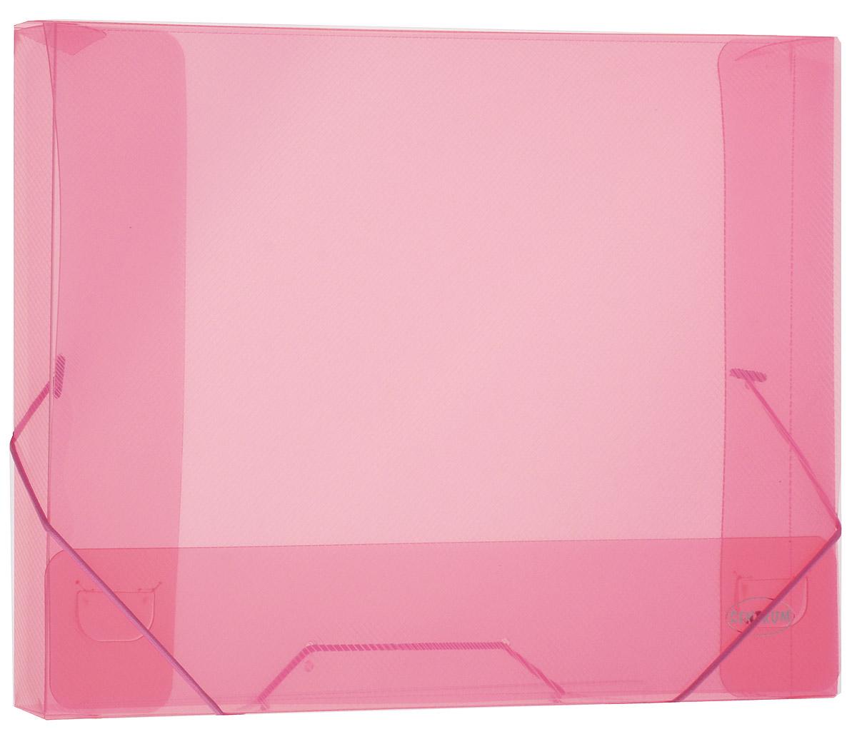 Centrum Папка на резинке цвет розовый80019_розовыйПапка-конверт на резинке Centrum - это удобный и функциональный офисный инструмент, предназначенный для хранения итранспортировки рабочих бумаг и документов формата А4.Папка с двойной угловой фиксацией резиновой лентой изготовлена из износостойкого полупрозрачного полипропилена. Внутри папка имеет три клапана, что обеспечивает надежную фиксацию бумаг и документов. Оформлена тиснением в виде параллельной штриховки.Папка - это незаменимый атрибут для студента, школьника, офисного работника. Она надежно сохранит ваши документы исбережет их от повреждений, пыли и влаги.