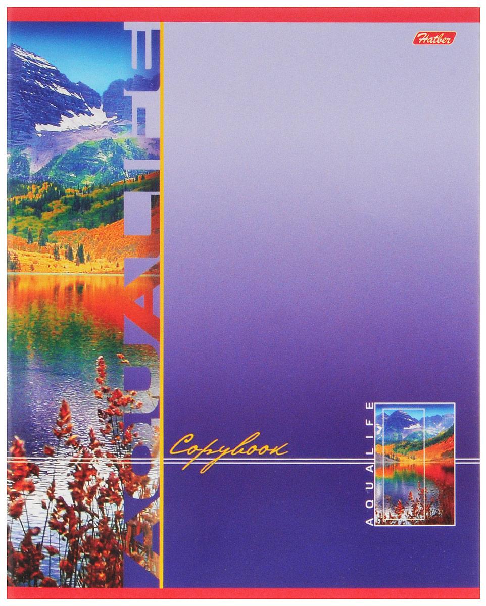 Hatber Тетрадь Аквалайф 80 листов в линейку цвет фиолетовый72523WDТетрадь в линейку Hatber Аквалайф предназначена для объемных записей и незаменима для старшеклассников и студентов.Обложка, выполненная из плотного мелованного картона, позволит сохранить тетрадь в аккуратном состоянии на протяжении всего времени использования. Лицевая сторона оформлена красочным изображением водной глади на фоне гор. Внутренний блок тетради, соединенный металлическими скрепками, состоит из 80 листов белой бумаги в голубую линейку с полями.