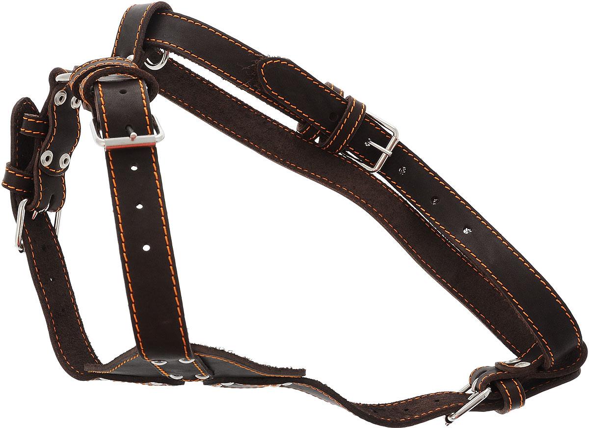 Шлейка для собак Каскад, цвет: темно-коричневый, ширина 2,5 см, обхват груди 69-77 см0120710Однослойная шлейка Каскад, изготовленная из искусственной кожи, подходит для средних и крупных пород собак. Крепкие металлические элементы делают ее надежной и долговечной. Шлейка - это альтернатива ошейнику. Правильно подобранная шлейка не стесняет движения питомца, не натирает кожу, поэтому животное чувствует себя в ней уверенно и комфортно. Изделие отличается высоким качеством, удобством и универсальностью.Размер регулируется при помощи пряжек.Обхват шеи: 44-60 см. Обхват груди: 69-77 см.Ширина шлейки: 2,5 см.