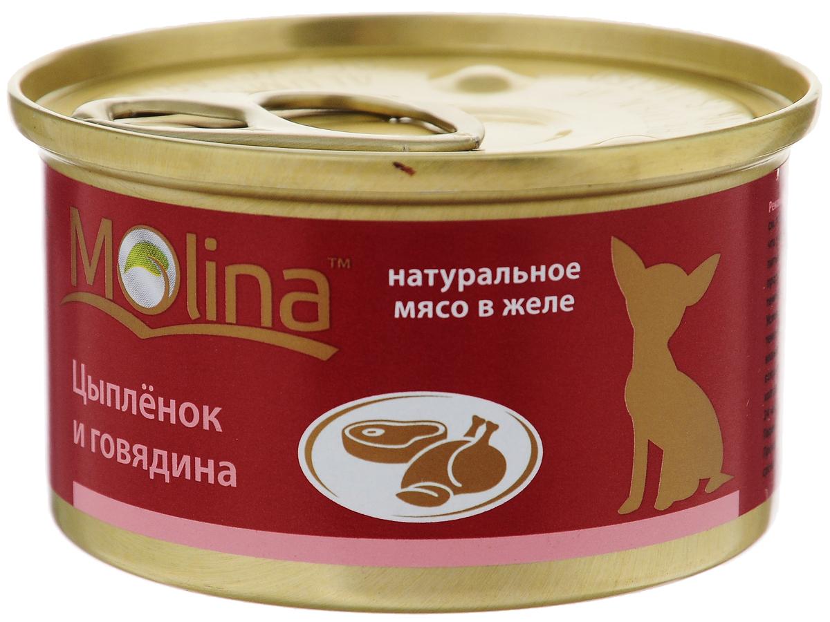 Консервы для собак Molina, с цыпленком и говядиной в желе, 85 г0120710Консервы для собак Molina - это высококачественный, сбалансированный, натуральный продукт, который содержит все необходимые компоненты, обеспечивающие организм ваших питомцев энергией, витаминами и минеральными веществам, необходимыми для здорового роста и развития. Консервы изготовлены из натурального мяса цыпленка и говядины желе.Консервы Molina - польза натуральных ингредиентов для долгой и здоровой жизни вашего питомца.Товар сертифицирован.