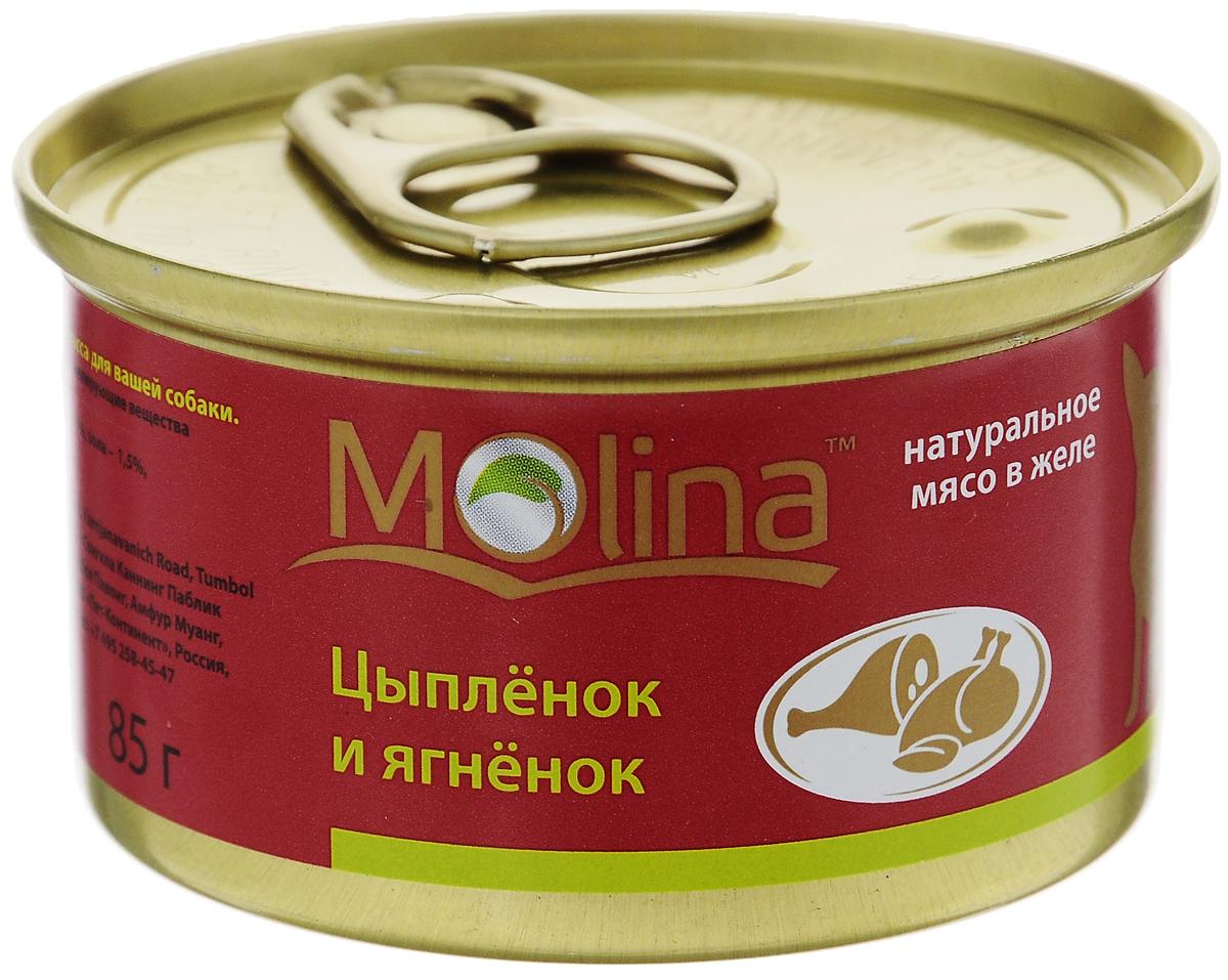 Консервы для собак Molina, с цыпленком и ягненком в желе, 85 г0120710Консервы для собак Molina - это высококачественный, сбалансированный, натуральный продукт, который содержит все необходимые компоненты, обеспечивающие организм ваших питомцев энергией, витаминами и минеральными веществам, необходимыми для здорового роста и развития. Консервы изготовлены из натурального мяса цыпленка и ягненка в желе.Консервы Molina - польза натуральных ингредиентов для долгой и здоровой жизни вашего питомца.Товар сертифицирован.