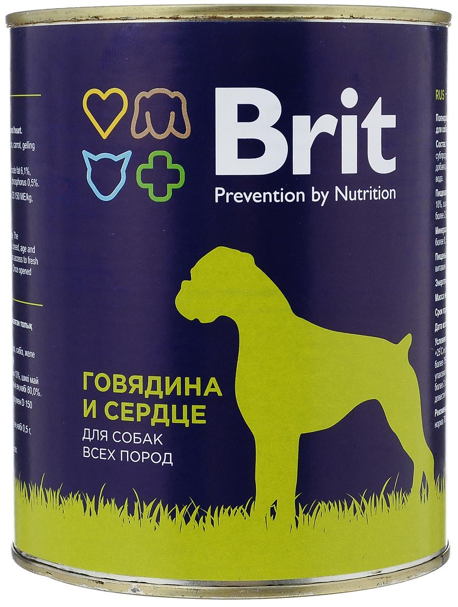 Консервы для собак Brit, с говядиной и сердцем, 850 г0120710Консервы Brit - полнорационное питание для взрослых собак всех пород. Высококачественный корм идеально подойдет вашему любимцу. Консервы лучше усваиваются, чем сухие корма. Консервы Brit - прекрасное и вкусное дополнение к рациону вашего любимца. Товар сертифицирован.