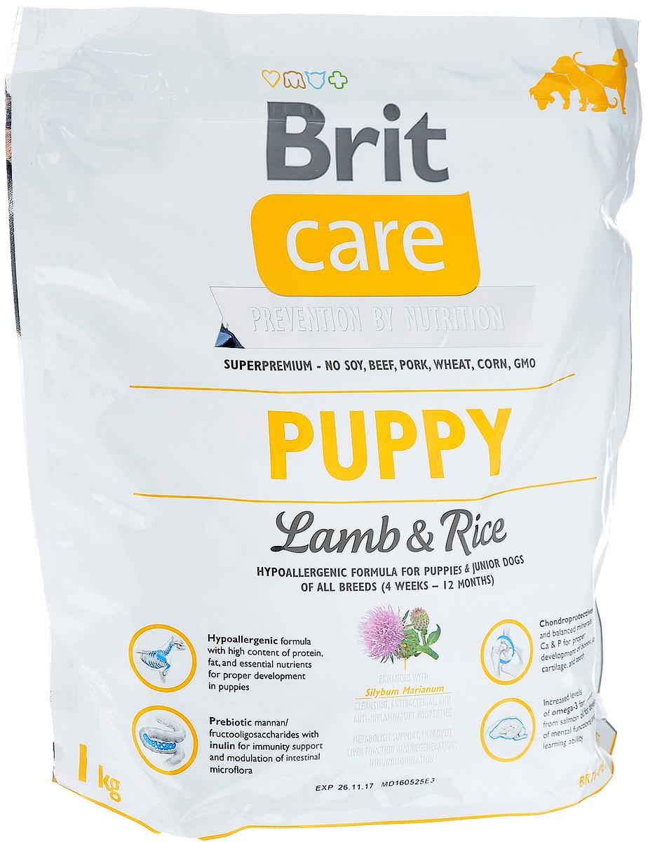 Корм сухой Brit Care Puppy All Breed, гипоаллергенный, для щенков и молодых собак всех пород, с ягненком и рисом, 1 кг6801Сухой корм Brit Care Puppy All Breed - это полноценный рацион для щенков всех пород (от 4 недель до 12 месяцев). Рекомендуется также беременным и кормящим собакам. Комплексное содержание питательных веществ оказывает благоприятное влияние на кости, хрящи и зубы. Товар сертифицирован.