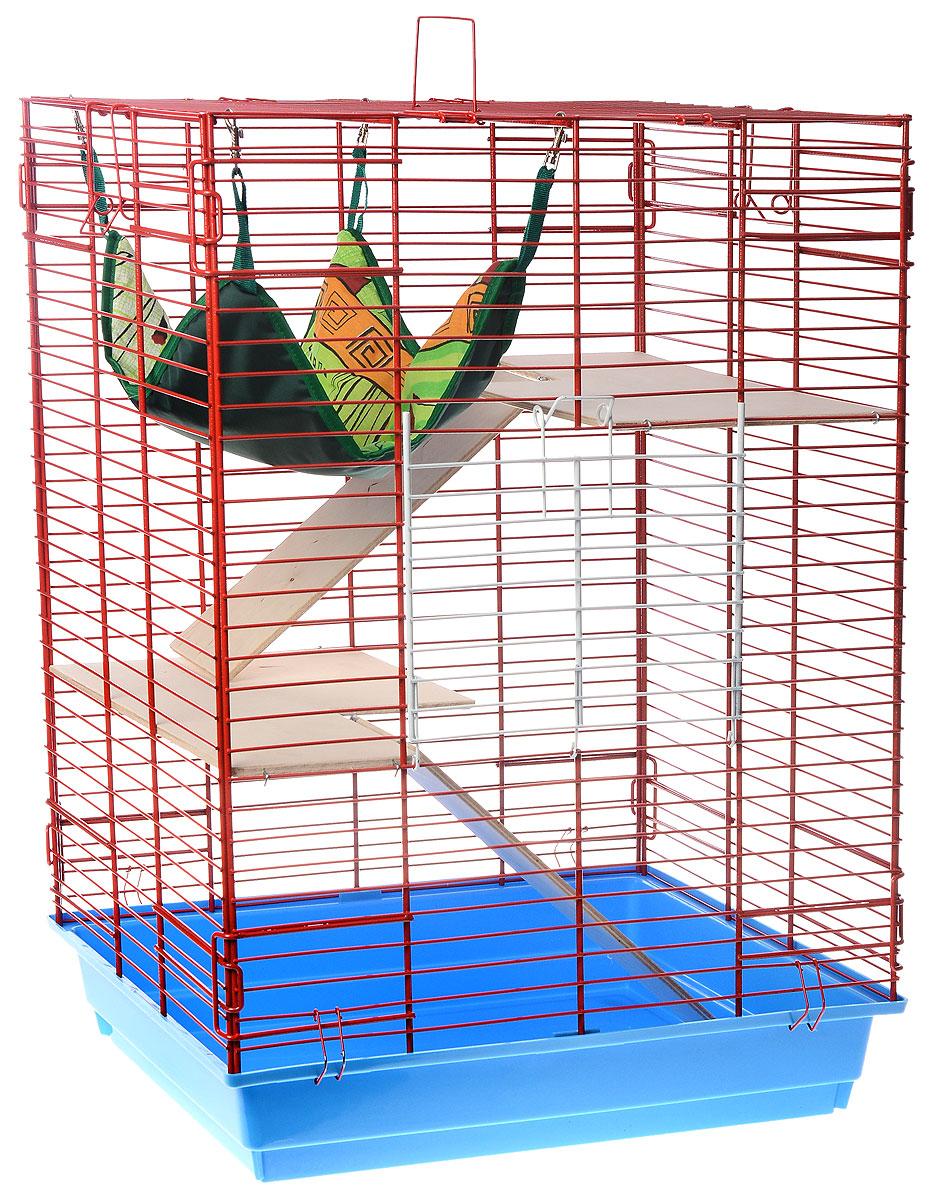 Клетка для шиншилл и хорьков ЗооМарк, цвет: голубой поддон, красная решетка, 59 х 41 х 79 см. 725дк240ж_желтый, синийКлетка ЗооМарк, выполненная из полипропилена и металла, подходит для шиншилл и хорьков. Большая клетка оборудована длинными лестницами и гамаком. Изделие имеет яркий поддон, удобно в использовании и легко чистится. Сверху имеется ручка для переноски. Такая клетка станет уединенным личным пространством и уютным домиком для грызуна.