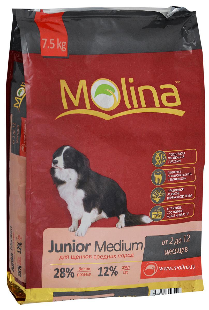 Корм сухой для щенков средних пород Molina Junior Medium, 7,5 кг0120710Полнорационный сухой корм Molina Junior Medium предназначен для щенков средних пород возрастом от 2 до12 месяцев. Оптимальное содержание кальция и фосфора обеспечивает правильное формирование скелета и здоровье зубов. Баланс макроэлементов и микроэлементов способствует развитию роста и правильному формированию суставов. Специальный комплекс витаминов и антиоксидантов укрепляет иммунитет. Жирные кислоты Омега-6 и Омега-3 служат для правильного развития нервной системы, а также улучшает состояние кожи и шерсти. Товар сертифицирован.