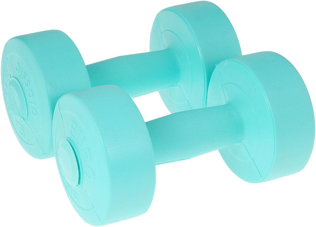 Гантели виниловые Euro-Classic, цвет: бирюзовый, 1,5 кг, 2 штГв1,5_бирюзовыйГантели Euro-Classic идеально подходят как для тренировок дома, так и в офисе. Гантели помогают укрепить мышцы рук, грудной клетки, верхней части спины и плеч. Внешнее покрытие изделий выполнено из прочного ПВХ, наполнитель - композитная смесь цемента и песка.