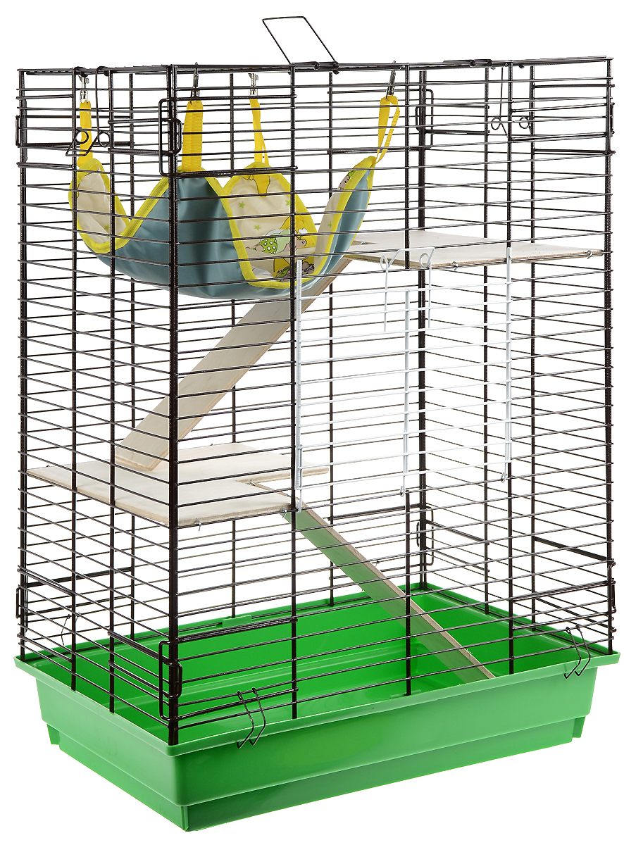 Клетка для шиншилл и хорьков ЗооМарк, цвет: зеленый поддон, коричневая решетка, 59 х 41 х 79 см. 725дк240ж_желтый, фиолетовыйКлетка ЗооМарк, выполненная из полипропилена и металла, подходит для шиншилл и хорьков. Большая клетка оборудована длинными лестницами и гамаком. Изделие имеет яркий поддон, удобно в использовании и легко чистится. Сверху имеется ручка для переноски. Такая клетка станет уединенным личным пространством и уютным домиком для грызуна.
