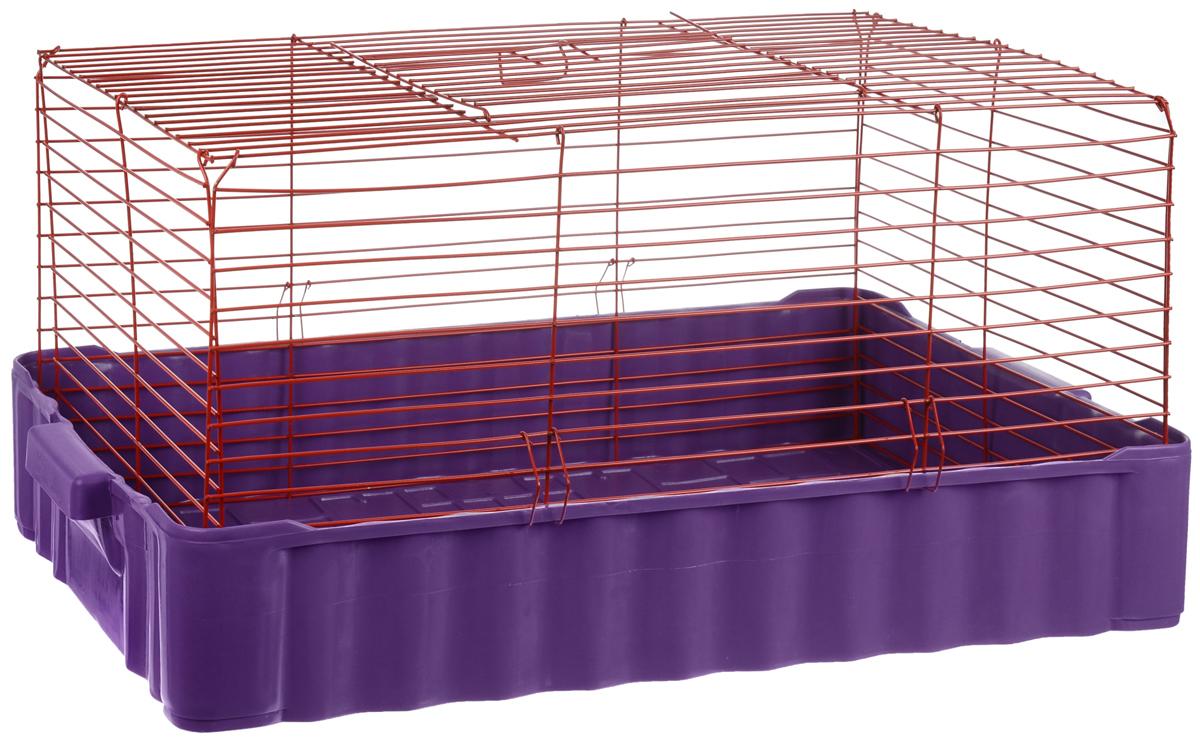 Клетка для кролика ЗооМарк, цвет: фиолетовый поддон, красная решетка, 79 х 47 х 48 см0120710Классическая клетка ЗооМарк со сплошным дном станет уединенным личным пространством и уютным домиком для кролика. Изделие выполнено из металла и пластика. Клетка надежно закрывается на защелки. Легко чистится. Для более удобной транспортировки клетку можно сложить.