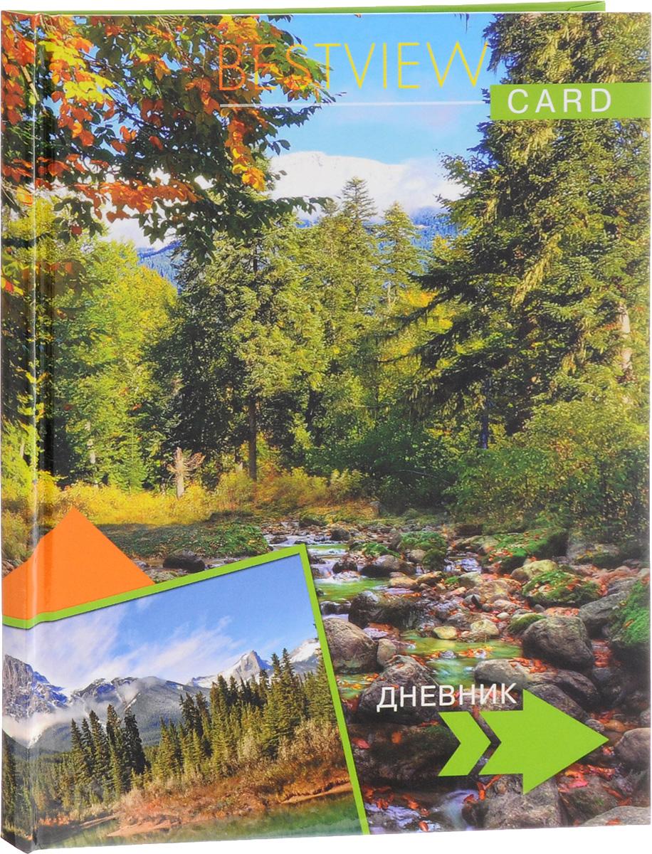 Апплика Дневник школьный Горный ручей
