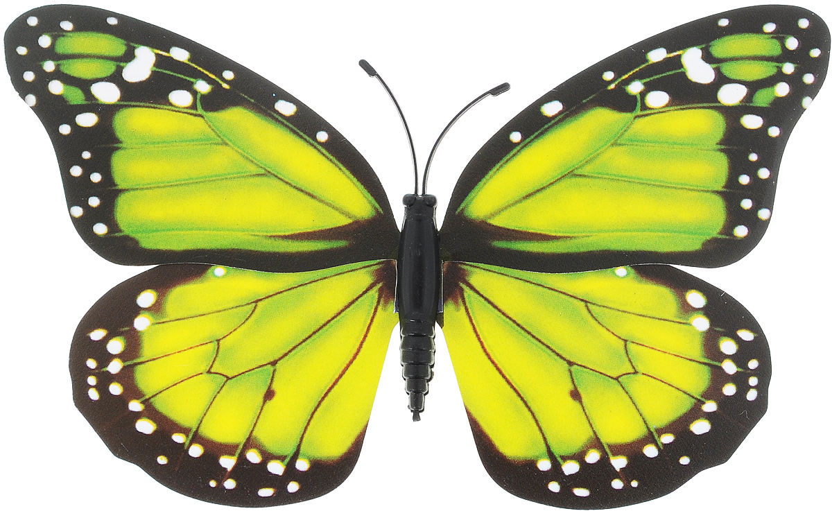 Декоративное украшение Village People Тропическая бабочка, с магнитом, цвет: черный, салатовый (32), 12 х 8 смБрелок для ключейДекоративная фигурка Village People Тропическая бабочка изготовлена из ПВХ. Изделие выполнено в виде бабочки и оснащено магнитом, с помощью которого вы сможете поместить изделие в любом удобном для вас месте. Это не только красивое украшение, но и замечательный способ отпугнуть птиц с грядок. Яркий дизайн фигурки оживит ландшафт сада.