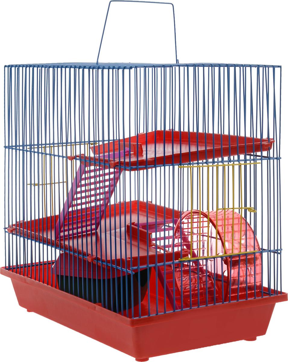 Клетка для грызунов ЗооМарк, 3-этажная, цвет: красный поддон, синяя решетка, красные этажи, 36 х 22,5 х 34 см. 13524871Клетка ЗооМарк, выполненная из полипропилена и металла, подходит для мелких грызунов. Изделие трехэтажное, оборудовано колесом для подвижных игр и пластиковым домиком. Клетка имеет яркий поддон, удобна в использовании и легко чистится. Сверху имеется ручка для переноски. Такая клетка станет уединенным личным пространством и уютным домиком для маленького грызуна.