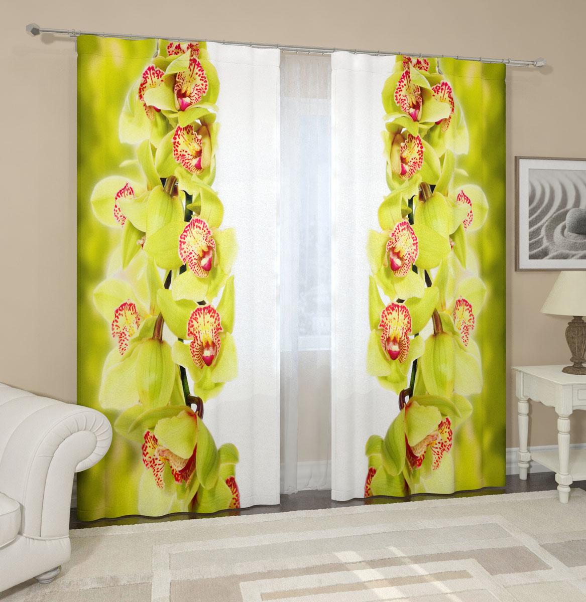 Комплект фотоштор Сирень Ветки зеленой орхидеи, на ленте, высота 260 см01787-20.000.00Фотошторы Сирень Ветки зеленой орхидеи, выполненные из габардина (100% полиэстера), отлично дополнят украшение любого интерьера. Особенностью ткани габардин является небольшая плотность, из-за чего ткань хорошо пропускает воздух и солнечный свет. Ткань хорошо держит форму, не требует специального ухода. Крепление на карниз при помощи шторной ленты на крючки. В комплекте 2 шторы. Ширина одного полотна: 145 см.Высота штор: 260 см.Рекомендации по уходу: стирка при 30 градусах, гладить при температуре до 110 градусов.Изображение на мониторе может немного отличаться от реального.