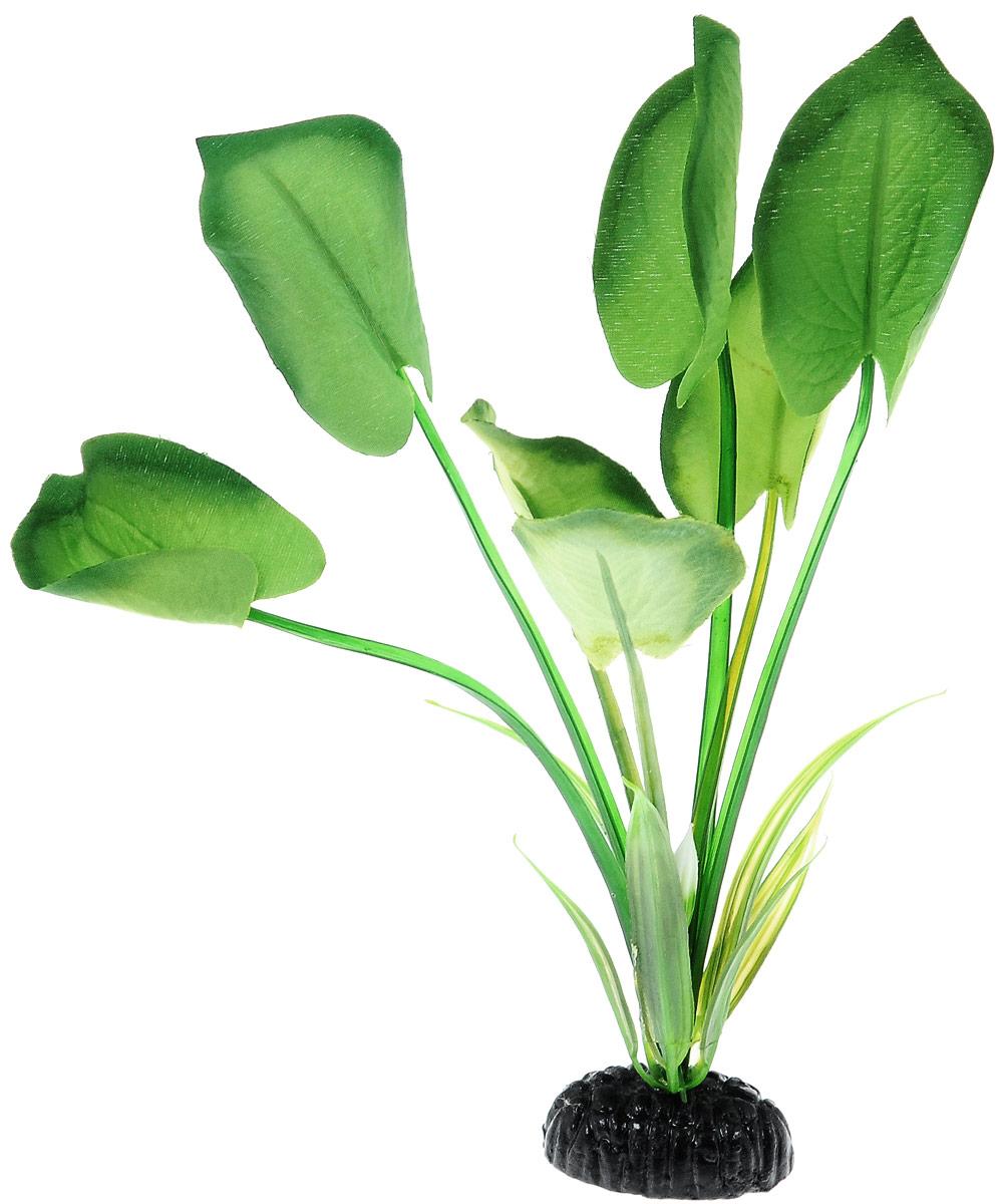 Растение для аквариума Barbus Эхинодорус, шелковое, высота 20 см. Plant 044/20607668Растение для аквариума Barbus Эхинодорус, выполненное из высококачественного нетоксичного пластика и шелка, станет прекрасным украшением вашего аквариума. Шелковое растение идеально подходит для дизайна всех видов аквариумов. В воде происходит абсолютная имитация живых растений. Изделие не требует дополнительного ухода и просто в применении.Растение абсолютно безопасно, нейтрально к водному балансу, устойчиво к истиранию краски, подходит как для пресноводного, так и для морского аквариума. Растение для аквариума Barbus Эхинодорус поможет вам смоделировать потрясающий пейзаж на дне вашего аквариума или террариума.