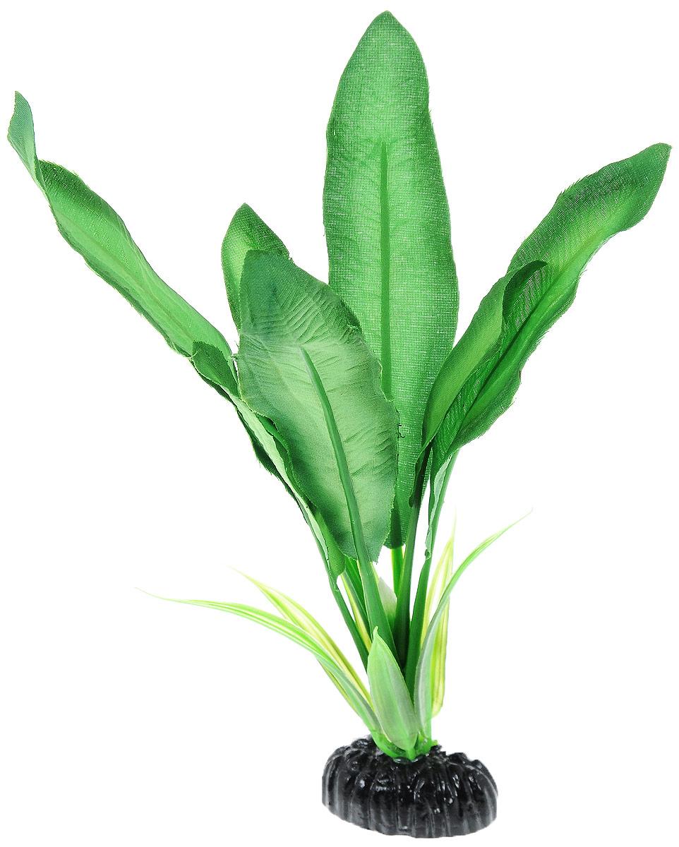 Растение для аквариума Barbus Эхинодорус Майор, шелковое, высота 20 см0120710Растение для аквариума Barbus Эхинодорус Майор, выполненное из высококачественного нетоксичного пластика и шелка, станет прекрасным украшением вашего аквариума. Шелковое растение идеально подходит для дизайна всех видов аквариумов. В воде происходит абсолютная имитация живых растений. Изделие не требует дополнительного ухода и просто в применении.Растение абсолютно безопасно, нейтрально к водному балансу, устойчиво к истиранию краски, подходит как для пресноводного, так и для морского аквариума. Растение для аквариума Barbus Эхинодорус Майор поможет вам смоделировать потрясающий пейзаж на дне вашего аквариума или террариума.