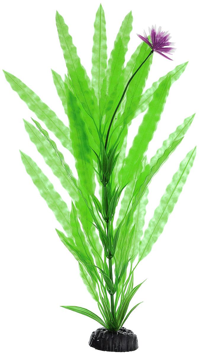 Растение для аквариума Barbus Апоногетон курчавый, пластиковое, цвет: зеленый, фиолетовый, белый, высота 50 см0120710Растение для аквариума Barbus Апоногетон курчавый, выполненное из высококачественного нетоксичного пластика, станет прекрасным украшением вашего аквариума. Изделие отличается реалистичным исполнением с множеством мелких деталей и представляет собой цветок с шикарно раскинутыми листьями и ярким бутоном. Растение абсолютно безопасно, нейтрально к водному балансу, устойчиво к истиранию краски, подходит как для пресноводного, так и для морского аквариума. Растение для аквариума Barbus Апоногетон курчавый поможет вам смоделировать потрясающий пейзаж на дне вашего аквариума или террариума.