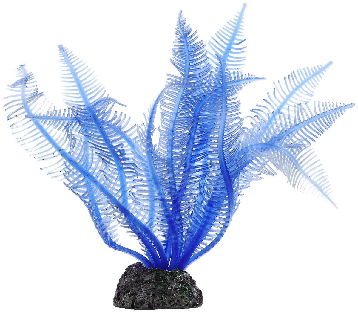 Декорация для аквариума Barbus Коралл, силиконовая, цвет: синий, серый, высота 11 см0120710Декорация для аквариума Barbus Коралл, выполненная из высококачественного силикона и пластика, станет прекрасным украшением вашего аквариума. Изделие отличается реалистичным исполнением с множеством мелких деталей. Декорация абсолютно безопасна, нейтральна к водному балансу, устойчива к истиранию краски, подходит как для пресноводного, так и для морского аквариума. Благодаря декорациям вы сможете смоделировать потрясающий пейзаж на дне вашего аквариума или террариума.Высота декорации: 11 см.Размер основания: 3,5 х 3 см.