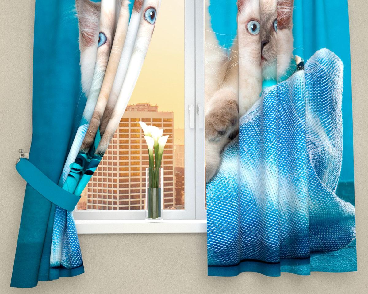 Комплект фотоштор Сирень Три котенка, на ленте, высота 160 см106-026Фотошторы для кухни Сирень Три котенка, выполненные из габардина (100% полиэстера), отлично дополнят украшение любого интерьера. Особенностью ткани габардин является небольшая плотность, из-за чего ткань хорошо пропускает воздух и солнечный свет. Ткань хорошо держит форму, не требует специального ухода. Крепление на карниз при помощи шторной ленты на крючки. В комплекте 2 шторы. Ширина одного полотна: 145 см.Высота штор: 160 см.Рекомендации по уходу: стирка при 30 градусах, гладить при температуре до 110 градусов.Изображение на мониторе может немного отличаться от реального.Подхваты в комплект не входят.