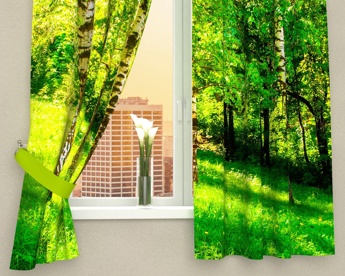 Комплект фотоштор Сирень Сочные краски леса, на ленте, высота 160 смW678(W1223) 145x270 2шт. V27Фотошторы для кухни Сирень Сочные краски леса, выполненные изгабардина (100% полиэстера), отлично дополнят украшение любогоинтерьера. Особенностью ткани габардин является небольшая плотность, из-зачего ткань хорошо пропускает воздух и солнечный свет. Ткань хорошодержит форму, не требует специального ухода.Крепление на карниз при помощи шторной ленты на крючки.В комплекте 2 шторы.Ширина одного полотна: 145 см.Высота штор: 160 см.Рекомендации по уходу: стирка при 30 градусах, гладить при температуре до 110градусов.Изображение на мониторе может немного отличаться от реального.Подхваты в комплект не входят.