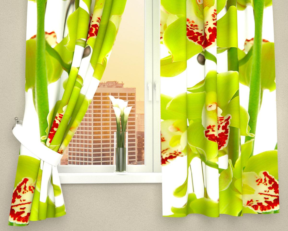 Комплект фотоштор Сирень Зеленая орхидея, на ленте, высота 160 см98299571Фотошторы для кухни Сирень Зеленая орхидея, выполненные из габардина (100% полиэстера), отлично дополнят украшение любого интерьера. Особенностью ткани габардин является небольшая плотность, из-за чего ткань хорошо пропускает воздух и солнечный свет. Ткань хорошо держит форму, не требует специального ухода. Крепление на карниз при помощи шторной ленты на крючки. В комплекте 2 шторы. Ширина одного полотна: 145 см.Высота штор: 160 см.Рекомендации по уходу: стирка при 30 градусах, гладить при температуре до 110 градусов.Изображение на мониторе может немного отличаться от реального.Подхваты в комплект не входят.