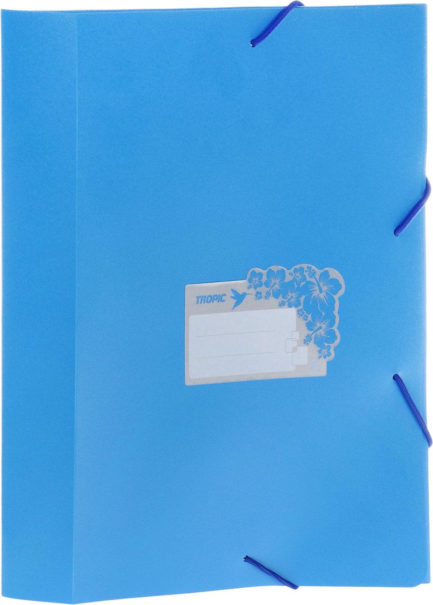 Бюрократ Папка-короб на резинке Tropic формат А4 цвет голубой86948Папка-короб на резинке Tropic - это удобный и функциональный офисный инструмент, предназначенный для хранения и транспортировки большого объема рабочих бумаг и документов формата А4. На лицевой стороне папки имеется место для ФИО владельца, оформленное рисунком с тропическими цветами. Папка изготовлена из жесткого, но гибкого фактурного пластика и закрывается при помощи угловых резинок. Резинки не позволят папке раскрыться в неподходящий момент. Папка надежно сохранит ваши документы и сбережет их от повреждений, пыли и влаги.