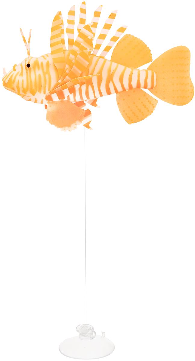 Декорация для аквариума Barbus Рыба крылатка, цвет: оранжевый0120710Декорация для аквариума Barbus Рыба крылатка - это невероятно реалистичная имитация настоящей рыбы. Изделие выполнено из силикона, светится в темноте, оснащено воздушными клапанами, а плавники подвижны в потоке воды. Декорация выполнена из безопасного нетоксичного материала, безвредного для рыб и растений. Изделие снабжено специальной леской регулируемой длины и присоской, с помощью которой крепится к аквариуму. Рыбку необходимо размещать так, чтобы она попадала под потоки воды. На обратной стороне упаковки расположена примерная схема расположения. Длина лески: 40 см.