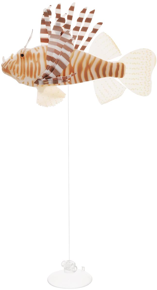 Декорация для аквариума Barbus Рыба крылатка, цвет: коричневыйDecor 023Декорация для аквариума Barbus Рыба крылатка - это невероятно реалистичная имитация настоящей рыбы. Изделие выполнено из силикона, светится в темноте, оснащено воздушными клапанами, а плавники подвижны в потоке воды. Декорация выполнена из безопасного нетоксичного материала, безвредного для рыб и растений. Изделие снабжено специальной леской регулируемой длины и присоской, с помощью которой крепится к аквариуму. Рыбку необходимо размещать так, чтобы она попадала под потоки воды. На обратной стороне упаковки расположена примерная схема расположения. Длина лески: 40 см.