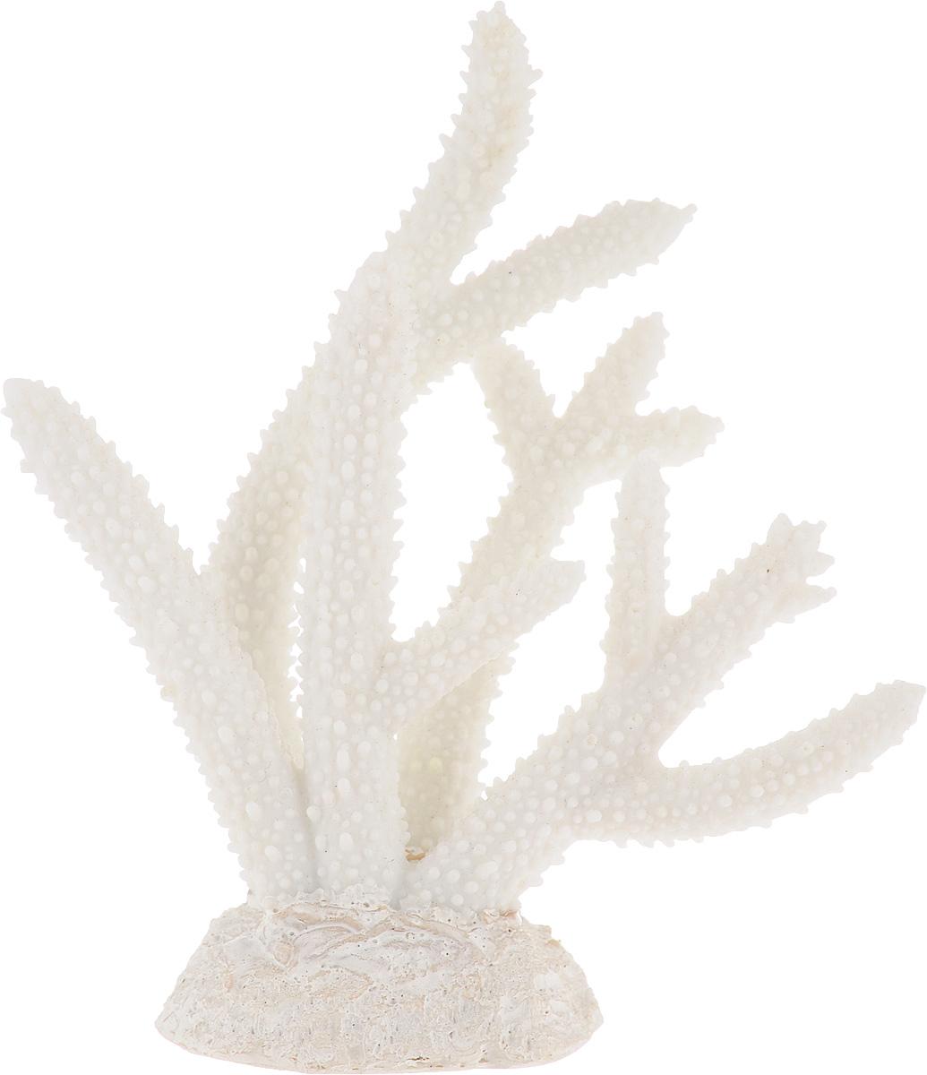 Декорация для аквариума Barbus Коралл, цвет: белый, 14,5 х 4,7 х 15 см0120710Декорация для аквариума Barbus Коралл, выполненная из высококачественного нетоксичного полирезина, станет прекрасным украшением вашего аквариума. Изделие отличается реалистичным исполнением с множеством мелких деталей. Декорация абсолютно безопасна, нейтральна к водному балансу, устойчива к истиранию краски, подходит как для пресноводного, так и для морского аквариума. Благодаря декорациям Barbus вы сможете смоделировать потрясающий пейзаж на дне вашего аквариума или террариума.