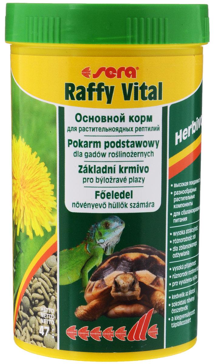 Корм для растительноядных рептилий Sera Raffy Vital, 250 мл0120710Sera Raffy Vital - это идеальный основной корм для сухопутных черепах и всех других видов растительноядных рептилий. Вкусная и богатая балластным веществом смесь из кормовых палочек и травяных таблеток оптимально удовлетворяет потребностям животных. Тщательно сбалансированное содержание витаминов и минералов укрепляет устойчивость к болезням и способствует здоровому росту костей и панциря.Аналитический состав: протеин 18,1%, жиры3,4%, клетчатка 9,3%, влажность 4,5%, зольные вещества 8%, кальций 1,5%, фосфор 0,6%,Витамины и провитамины: витамин А 24000 МЕ/кг, витамин D3 1200 МЕ/кг, витамин Е 48 мг/кг, витамин В1 24 мг/кг, витамин В2 72 мг/кг, витамин С 440 мг/кг.Микроэлементы: Fe (E1) 25 мг/кг, Cu (Е4) 1,3 мг/кг, Mn (Е5) 1,3 мг/кг, Zn (Е6) 24,9 мг/кг.Товар сертифицирован.