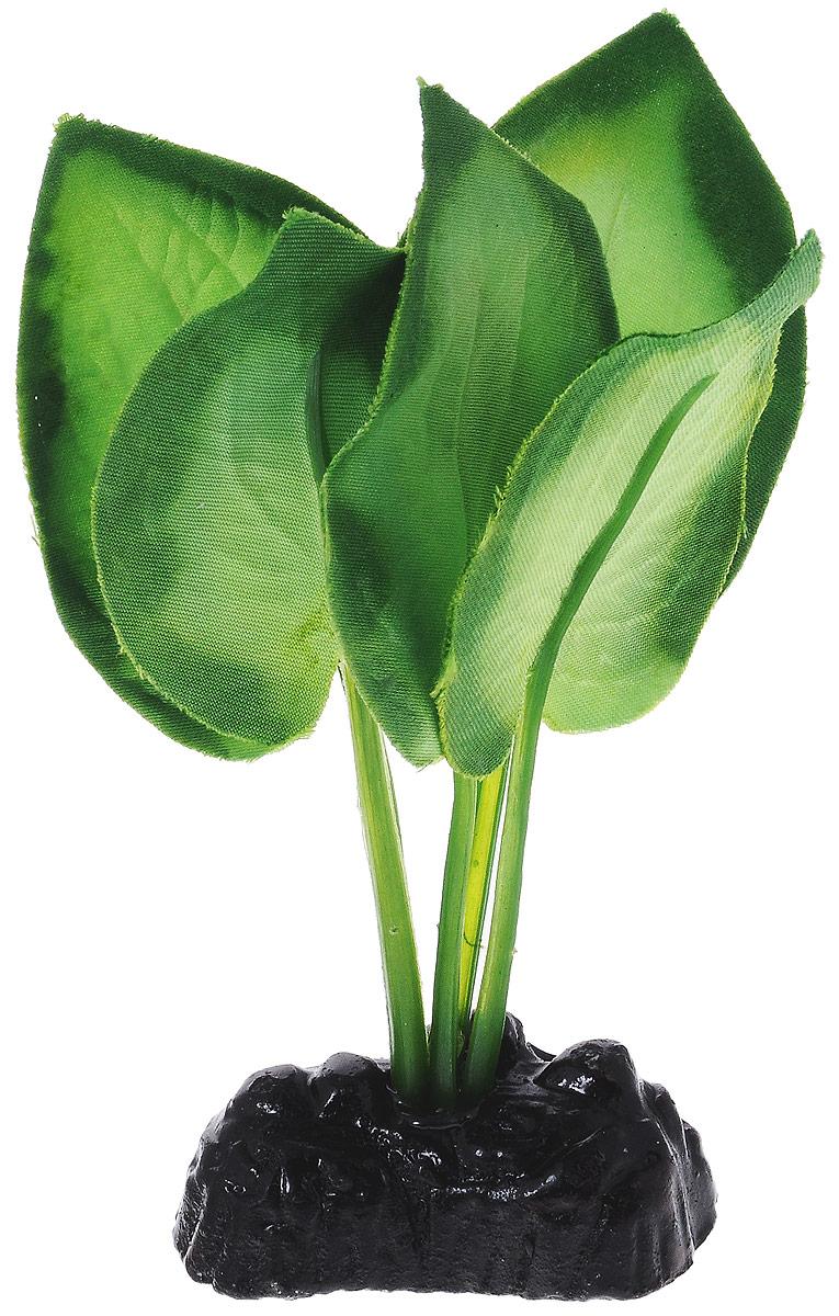Растение для аквариума Barbus Эхинодорус, шелковое, высота 10 см. Plant 044/10T4-60 BlueРастение для аквариума Barbus Эхинодорус, выполненное из качественного шелка, станет оригинальным украшением вашего аквариума. В воде происходит абсолютная имитация живого растения. Можно использовать в любой воде: пресной или морской. Изделие полностью безопасно для обитателей аквариума, не токсично, нейтрально к водному балансу, устойчиво к истиранию краски. Растение Barbus поможет вам смоделировать потрясающий пейзаж на дне вашего аквариума или террариума. Высота растения: 10 см.