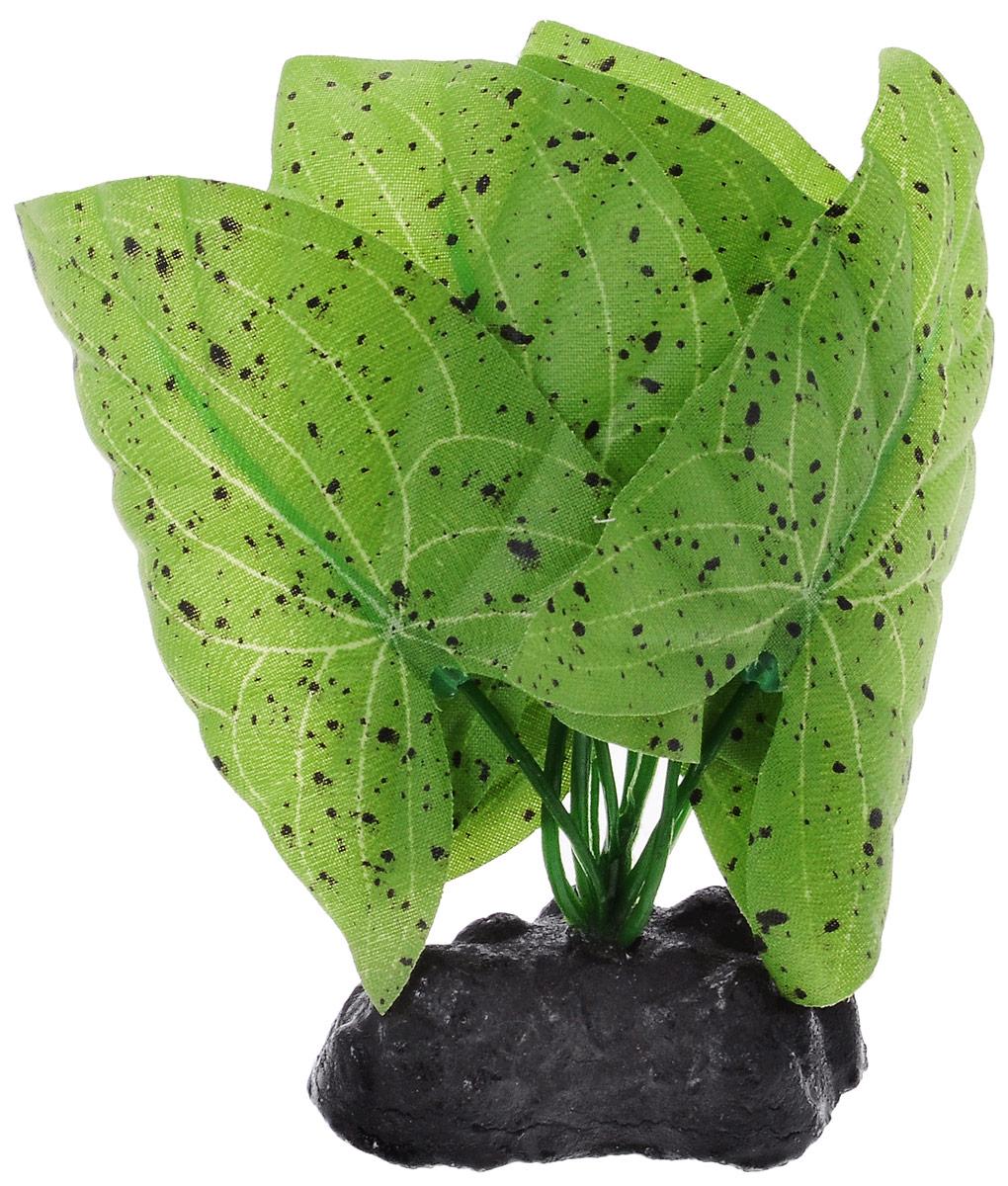 Растение для аквариума Barbus Нимфея пятнистая, шелковое, высота 10 смPlant 024/30Растение для аквариума Barbus Нимфея пятнистая, выполненное из качественного шелка, станет оригинальным украшением вашего аквариума. В воде создается абсолютная имитация живого растения. Можно использовать в любой воде: пресной или морской. Изделие безопасно, не токсично, нейтрально к водному балансу, устойчиво к истиранию краски. Растение Barbus поможет вам смоделировать потрясающий пейзаж на дне вашего аквариума или террариума. Высота растения: 10 см.