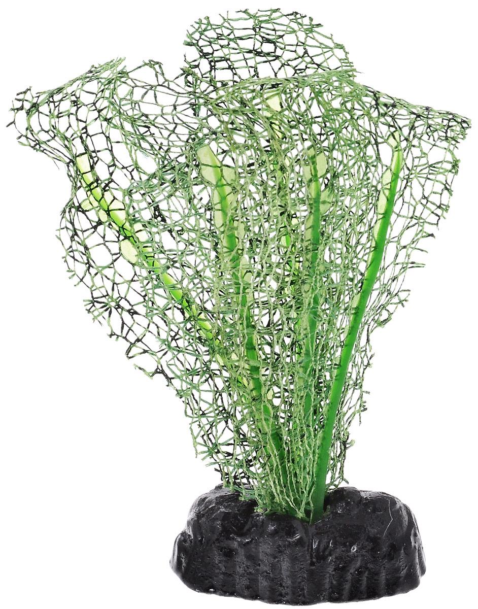 Растение для аквариума Barbus Апоногетон натанс, шелковое, цвет: зеленый, высота 10 см0120710Растение для аквариума Barbus Апоногетон натанс, выполненное из качественного шелка, станет оригинальным украшением вашего аквариума. В воде создается абсолютная имитация живого растения. Можно использовать в любой воде: пресной или морской. Изделие полностью безопасно для обитателей аквариума, не токсично, нейтрально к водному балансу, устойчиво к истиранию краски. Растение Barbus поможет вам смоделировать потрясающий пейзаж на дне вашего аквариума или террариума. Высота растения: 10 см.