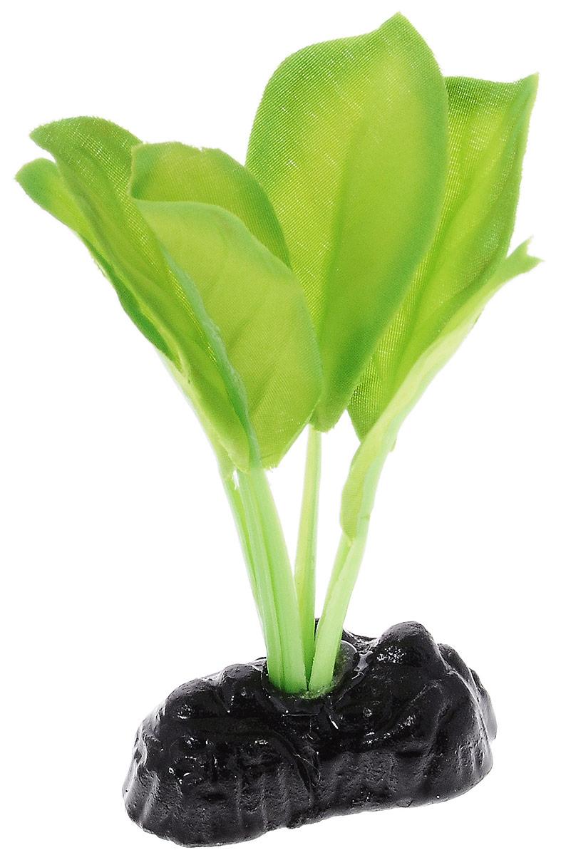 Растение для аквариума Barbus Эхинодорус Блехера, шелковое, высота 10 см0120710Растение для аквариума Barbus Эхинодорус Блехера, выполненное из качественного шелка, станет оригинальным украшением вашего аквариума. В воде создается абсолютная имитация живого растения. Можно использовать в любой воде: пресной или морской. Изделие полностью безопасно для обитателей аквариума, не токсично, нейтрально к водному балансу, устойчиво к истиранию краски. Растение Barbus поможет вам смоделировать потрясающий пейзаж на дне вашего аквариума или террариума. Высота растения: 10 см.