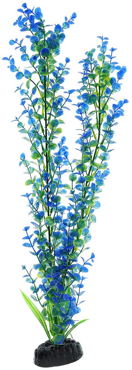 Растение для аквариума Barbus Бакопа, пластиковое, цвет: зеленый, синий, высота 50 см0120710Растение для аквариума Barbus Бакопа, выполненное из качественного пластика, станет оригинальным украшением вашего аквариума. Пластиковое растение идеально подходит для дизайна всех видов аквариумов. Оно абсолютно безопасно, нейтрально к водному балансу, устойчиво к истиранию краски, подходит как для пресноводного, так и для морского аквариума. Растение для аквариума Barbus поможет вам смоделировать потрясающий пейзаж на дне вашего аквариума или террариума. Высота растения: 50 см.