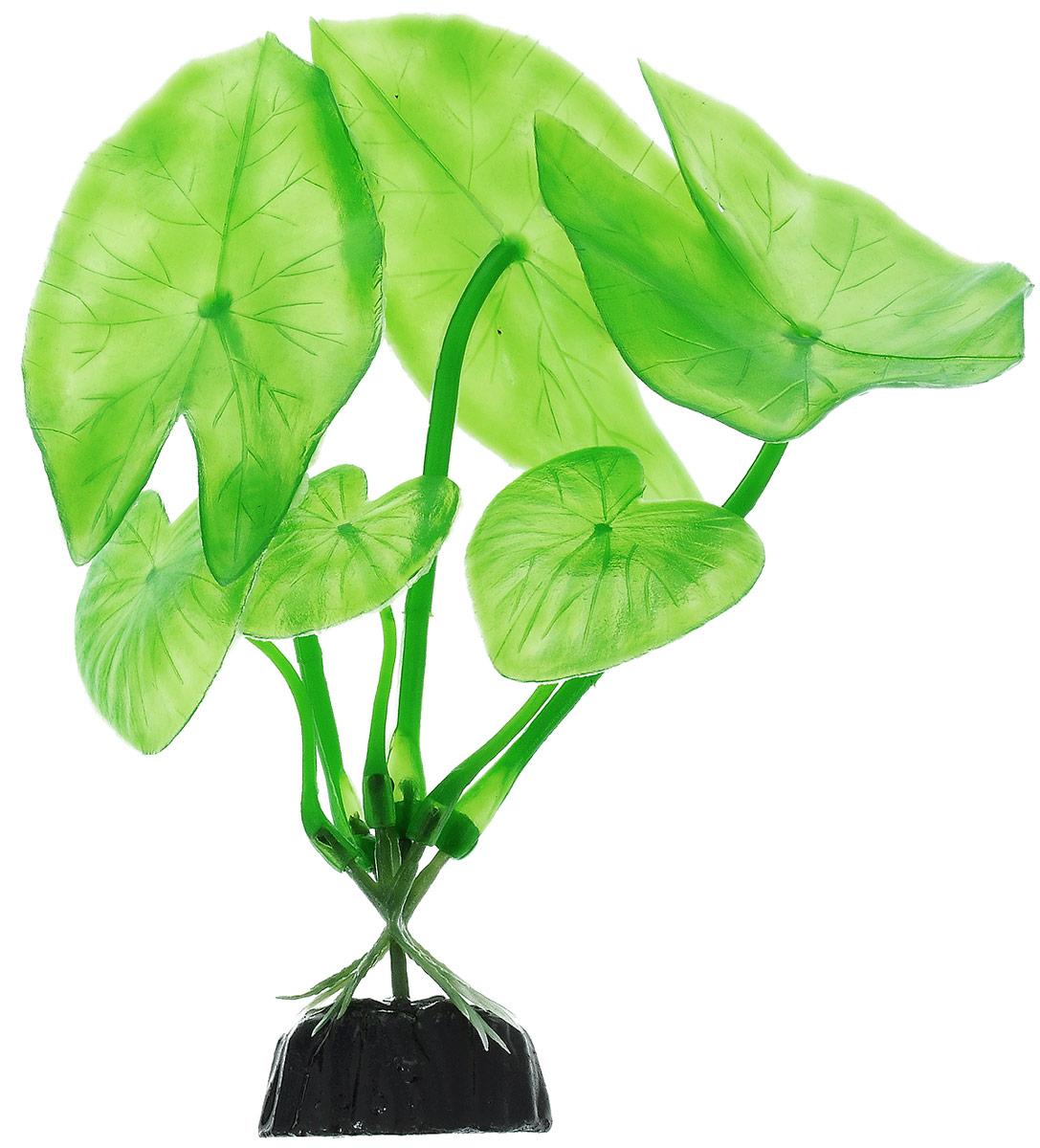 Растение для аквариума Barbus Нимфея, пластиковое, высота 10 см0120710Растение для аквариума Barbus Нимфея, выполненное из качественного пластика, станет прекрасным украшением вашего аквариума. Пластиковое растение идеально подходит для дизайна всех видов аквариумов. Оно абсолютно безопасно, нейтрально к водному балансу, устойчиво к истиранию краски, подходит как для пресноводного, так и для морского аквариума. Растение для аквариума Barbus поможет вам смоделировать потрясающий пейзаж на дне вашего аквариума или террариума. Высота растения: 10 см.
