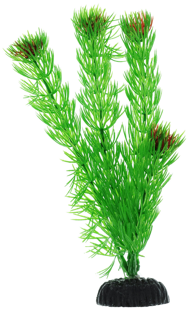Растение для аквариума Barbus Амбулия, пластиковое, высота 20 см0120710Растение для аквариума Barbus Амбулия, выполненное из качественного пластика, станет прекрасным украшением вашего аквариума. Пластиковое растение идеально подходит для дизайна всех видов аквариумов. Оно абсолютно безопасно, нейтрально к водному балансу, устойчиво к истиранию краски, подходит как для пресноводного, так и для морского аквариума. Растение для аквариума Barbus Амбулия поможет вам смоделировать потрясающий пейзаж на дне вашего аквариума или террариума. Высота растения: 20 см.