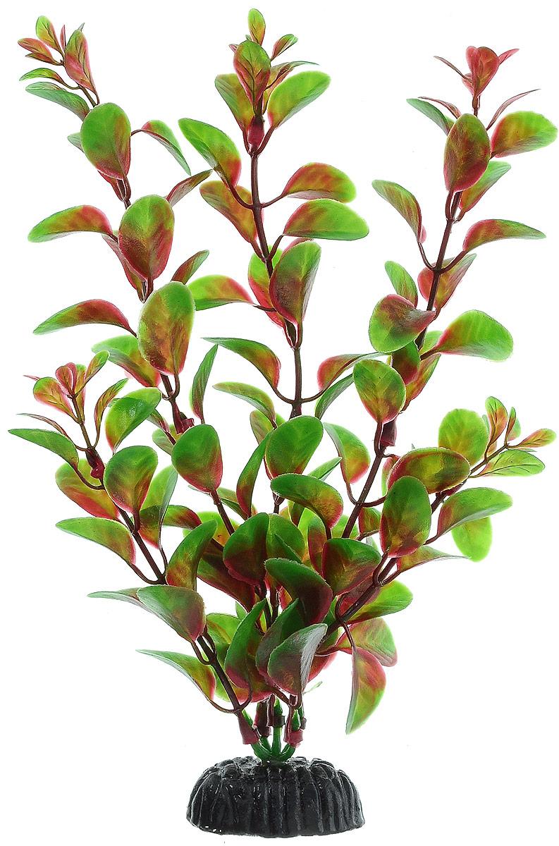 Растение для аквариума Barbus Людвигия красная, пластиковое, высота 20 см12171996Растение для аквариума Barbus Людвигия красная, выполненное из качественного пластика, станет прекрасным украшением вашего аквариума. Пластиковое растение идеально подходит для дизайна всех видов аквариумов. Оно абсолютно безопасно, нейтрально к водному балансу, устойчиво к истиранию краски, подходит как для пресноводного, так и для морского аквариума. Растение для аквариума Barbus поможет вам смоделировать потрясающий пейзаж на дне вашего аквариума или террариума. Высота растения: 20 см.