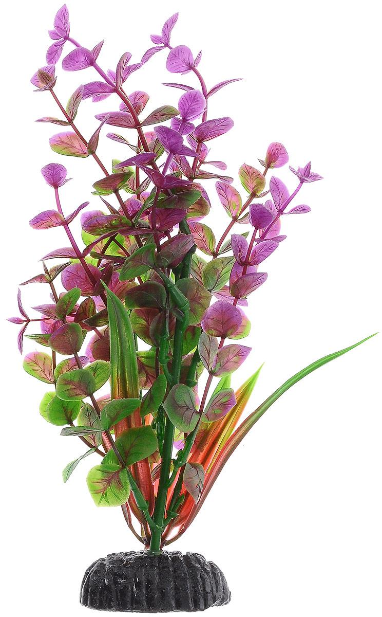 Растение для аквариума Barbus Бакопа, пластиковое, цвет: зеленый, фиолетовый, красный, высота 20 см0120710Растение для аквариума Barbus Бакопа, выполненное из качественного пластика, станет оригинальным украшением вашего аквариума. Пластиковое растение идеально подходит для дизайна всех видов аквариумов. Оно абсолютно безопасно, нейтрально к водному балансу, устойчиво к истиранию краски, подходит как для пресноводного, так и для морского аквариума. Растение для аквариума Barbus поможет вам смоделировать потрясающий пейзаж на дне вашего аквариума или террариума. Высота растения: 20 см.