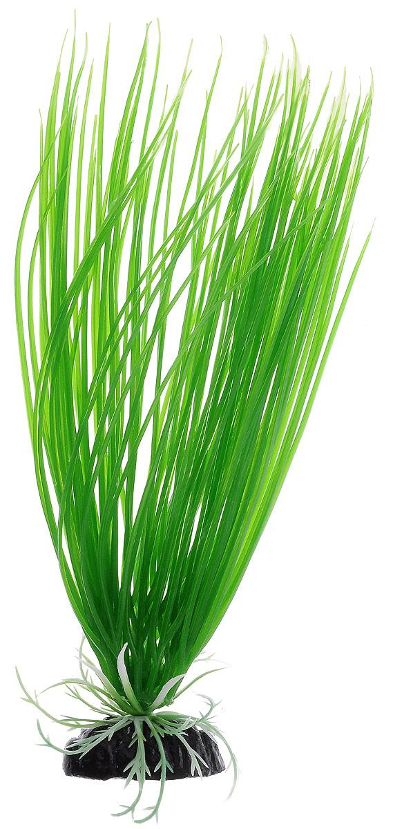 Растение для аквариума Barbus Акорус, пластиковое, высота 30 см растение для аквариума barbus людвигия ползучая красная пластиковое высота 30 см