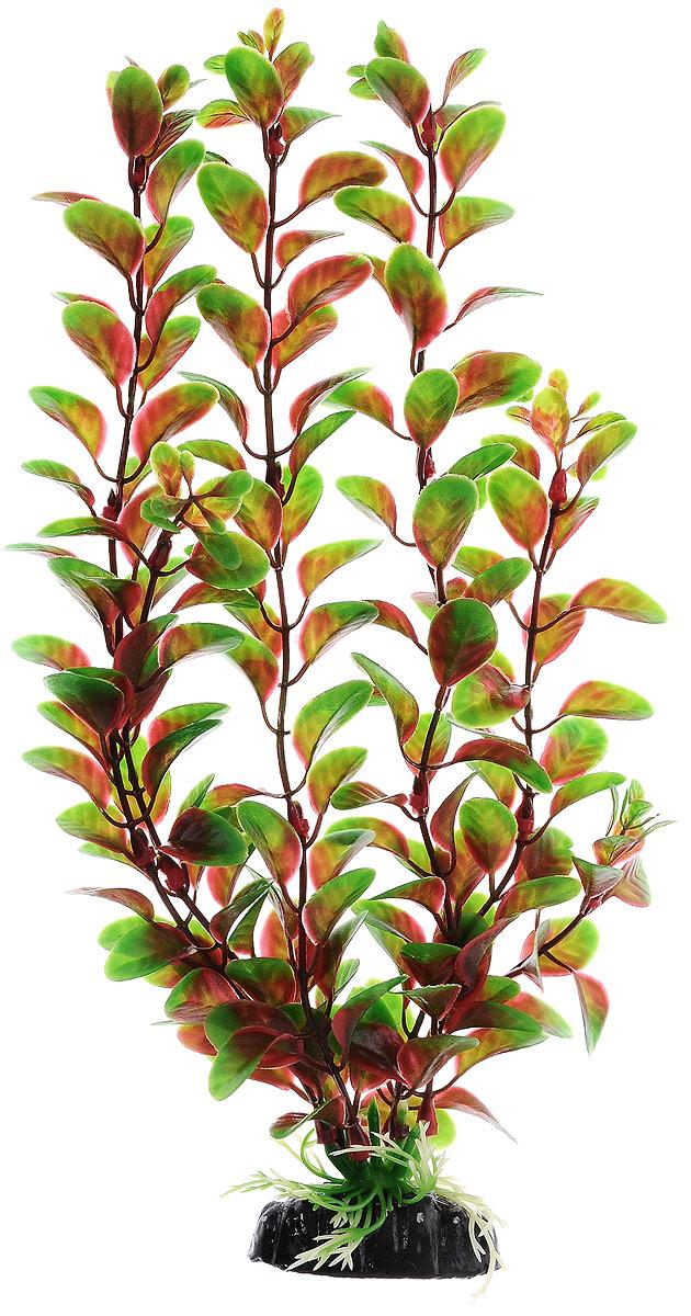 Растение для аквариума Barbus Людвигия красная, пластиковое, высота 30 см0120710Растение для аквариума Barbus Людвигия красная, выполненное из качественного пластика, станет прекрасным украшением вашего аквариума. Пластиковое растение идеально подходит для дизайна всех видов аквариумов. Оно абсолютно безопасно, нейтрально к водному балансу, устойчиво к истиранию краски, подходит как для пресноводного, так и для морского аквариума. Растение для аквариума Barbus поможет вам смоделировать потрясающий пейзаж на дне вашего аквариума или террариума. Высота растения: 30 см.