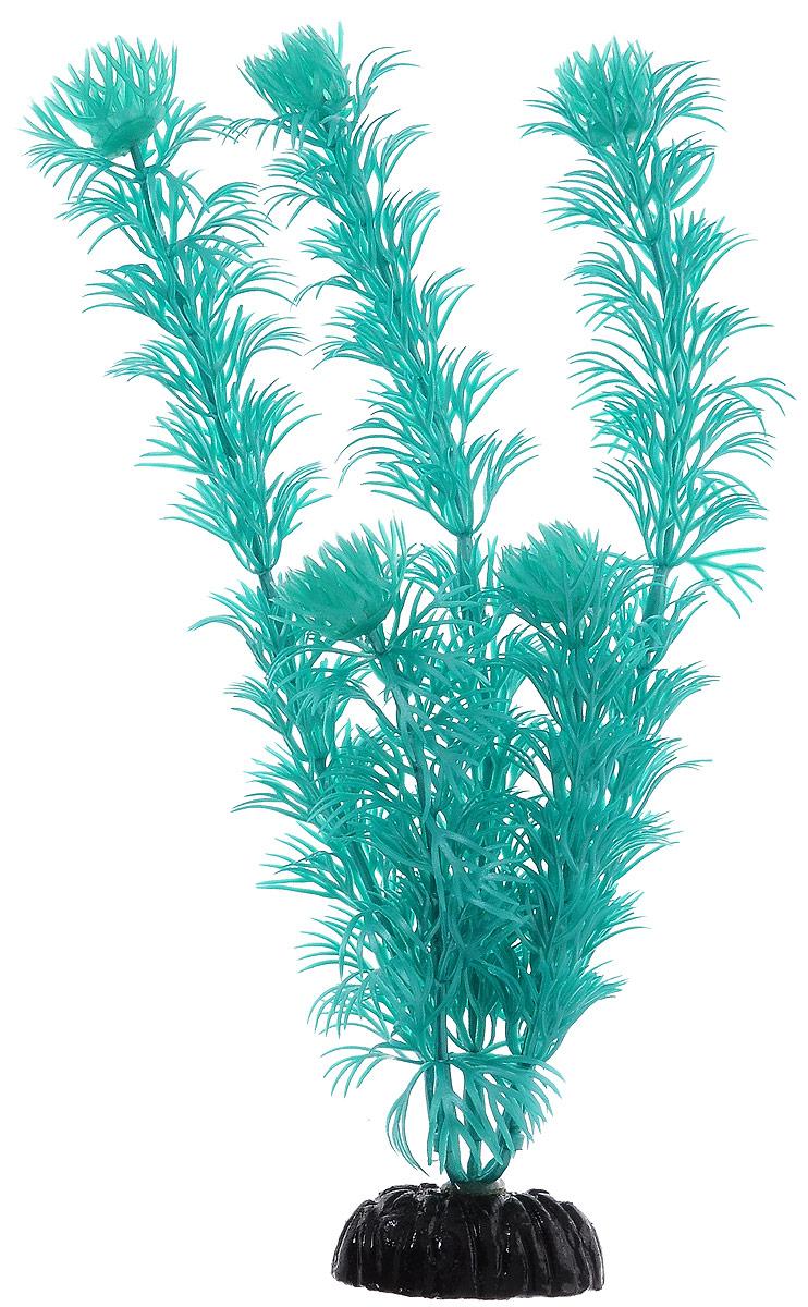 Растение для аквариума Barbus Кабомба, пластиковое, цвет: бирюзовый, высота 20 смPlant 007/10Растение Barbus Кабомба, выполненное из высококачественного нетоксичного пластика, станет прекрасным украшением вашего аквариума. Пластиковое растение идеально подходит для дизайна всех видов аквариумов. В воде происходит абсолютная имитация живых растений. Изделие не требует дополнительного ухода. Оно абсолютно безопасно, нейтрально к водному балансу, устойчиво к истиранию краски, подходит как для пресноводного, так и для морского аквариума. Растение для аквариума Barbus Кабомба поможет вам смоделировать потрясающий пейзаж на дне вашего аквариума.Высота растения: 20 см.