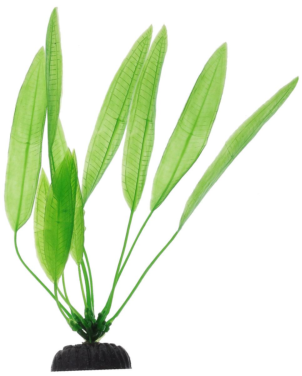 Растение для аквариума Barbus Эхинодорус амазонский, пластиковое, высота 20 смSponge 350Растение Barbus Эхинодорус амазонский, выполненное из высококачественного нетоксичного пластика, станет прекрасным украшением вашего аквариума. Пластиковое растение идеально подходит для дизайна всех видов аквариумов. В воде происходит абсолютная имитация живых растений. Изделие не требует дополнительного ухода. Оно абсолютно безопасно, нейтрально к водному балансу, устойчиво к истиранию краски, подходит как для пресноводного, так и для морского аквариума. Растение для аквариума Barbus Эхинодорус амазонский поможет вам смоделировать потрясающий пейзаж на дне вашего аквариума.Высота растения: 20 см.