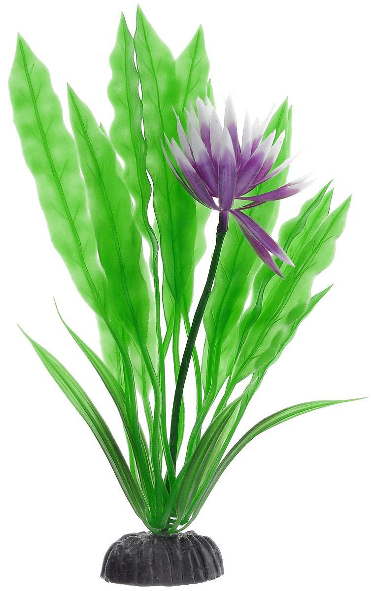 Растение для аквариума Barbus Апоногетон курчавый, пластиковое, высота 20 смPlant 029/20Растение Barbus Апоногетон курчавый, выполненное из высококачественного нетоксичного пластика, станет оригинальным украшением вашего аквариума. Пластиковое растение идеально подходит для дизайна всех видов аквариумов. В воде происходит абсолютная имитация живых растений. Изделие не требует дополнительного ухода. Растение абсолютно безопасно, нейтрально к водному балансу, устойчиво к истиранию краски, подходит как для пресноводного, так и для морского аквариума. Растение для аквариума Barbus Апоногетон курчавый поможет вам смоделировать потрясающий пейзаж на дне вашего аквариума.Высота растения: 20 см.