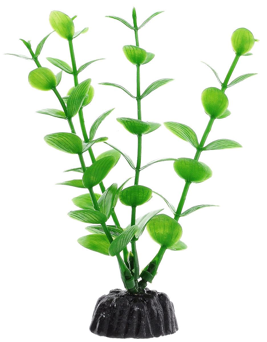 Растение для аквариума Barbus Бакопа зеленая, пластиковое, высота 10 смT4-25 BlueРастение Barbus Бакопа, выполненное из высококачественного нетоксичного пластика, станет прекрасным украшением вашего аквариума. Пластиковое растение идеально подходит для дизайна всех видов аквариумов. В воде происходит абсолютная имитация живых растений. Изделие не требует дополнительного ухода. Оно абсолютно безопасно, нейтрально к водному балансу, устойчиво к истиранию краски, подходит как для пресноводного, так и для морского аквариума. Растение для аквариума Barbus Бакопа поможет вам смоделировать потрясающий пейзаж на дне вашего аквариума.Высота растения: 10 см.