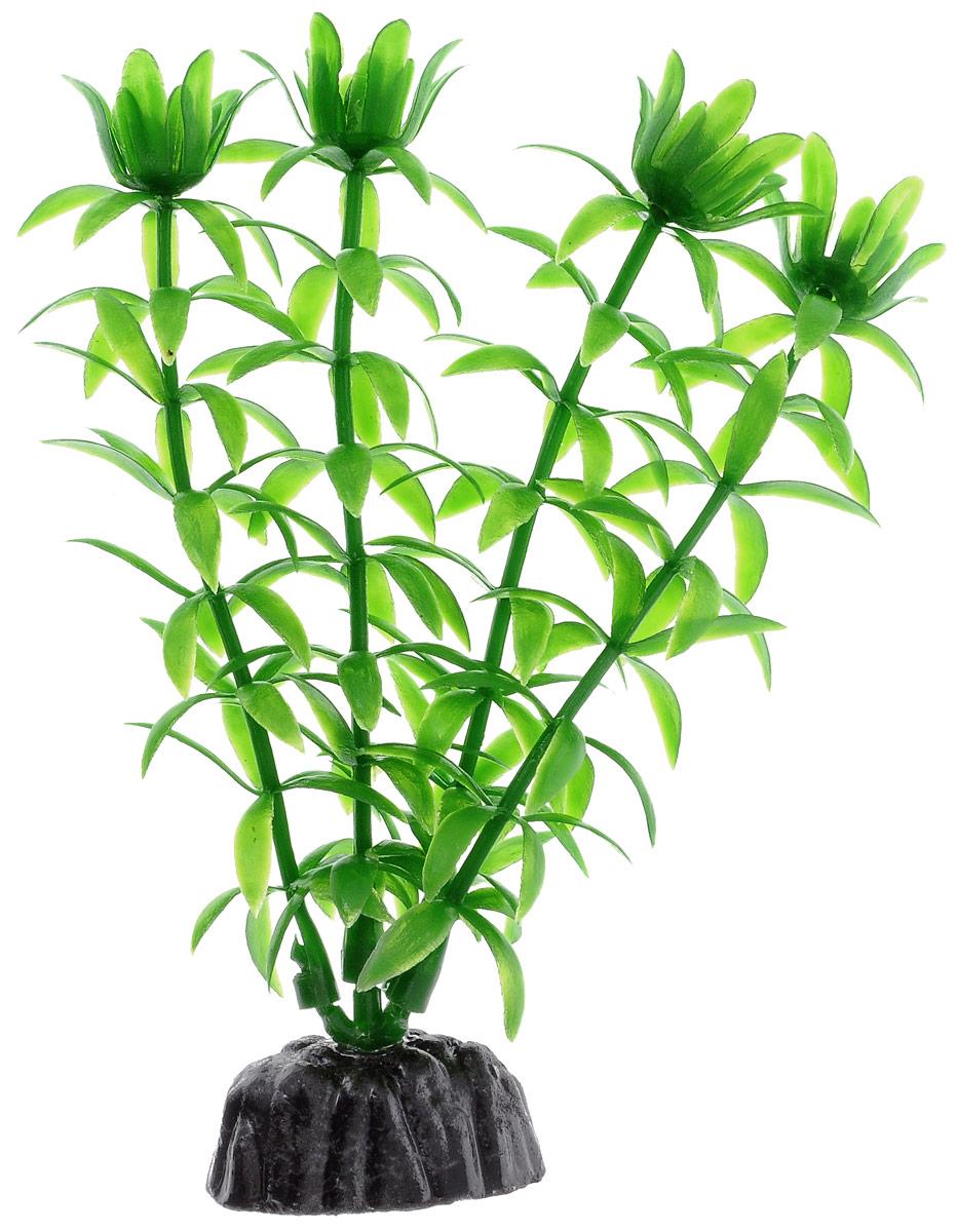 Растение для аквариума Barbus Элодея, пластиковое, высота 10 см0120710Растение для аквариума Barbus Элодея, выполненное из качественного пластика, станет прекрасным украшением вашего аквариума. Пластиковое растение идеально подходит для дизайна всех видов аквариумов. Оно абсолютно безопасно, нейтрально к водному балансу, устойчиво к истиранию краски, подходит как для пресноводного, так и для морского аквариума. Растение для аквариума Barbus поможет вам смоделировать потрясающий пейзаж на дне вашего аквариума или террариума. Высота растения: 10 см.